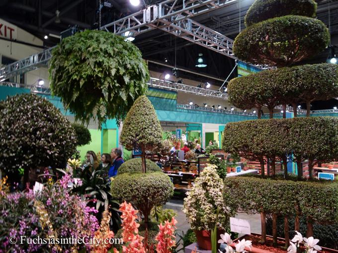 Philadelphia cactus and succulent society